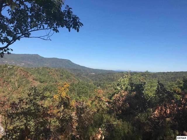 Lot 12 Trace Way, Sevierville, TN 37862 (#225378) :: The Terrell Team