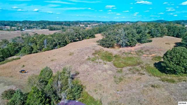 TRACT 5 Loves Lane Tract 5 34.26 A, Greeneville, TN 37743 (#225418) :: Prime Mountain Properties
