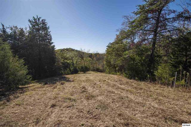 Lot Lakebend Lane, Dandridge, TN 37725 (#225428) :: The Terrell Team