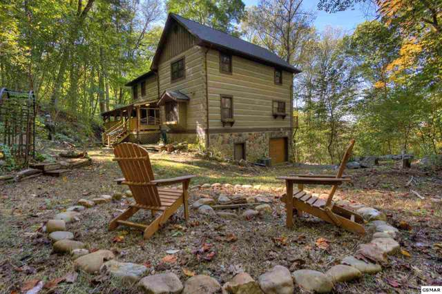 1330 School House Gap Rd, Townsend, TN 37882 (#225440) :: Colonial Real Estate