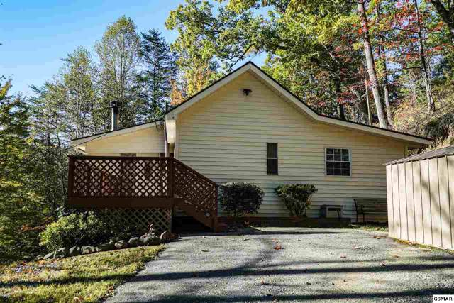 1360 Shirley Myers Ln, Sevierville, TN 37862 (#225442) :: Colonial Real Estate