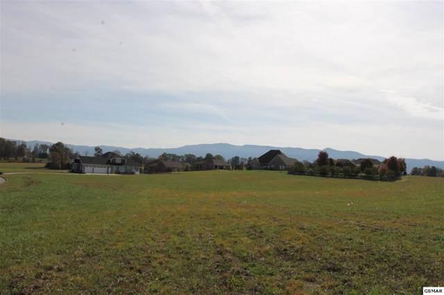 525 Bainbridge Dr, Walland, TN 37886 (#225450) :: SMOKY's Real Estate LLC
