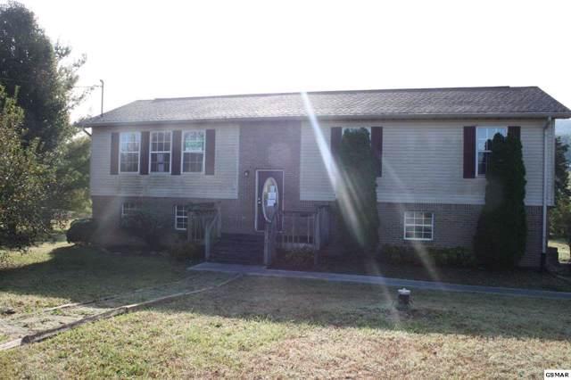 3206 Bativa Garden Ct, Sevierville, TN 37876 (#225454) :: The Terrell Team