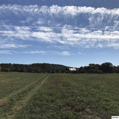 Parcel 12 E Dumplin Valley Road, Jefferson City, TN 37760 (#225469) :: Colonial Real Estate