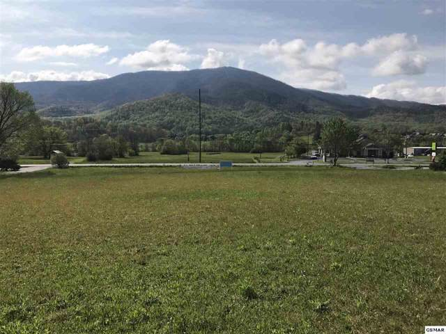 Lot 7 Wears Valley Rd, Sevierville, TN 37862 (#225476) :: The Terrell Team