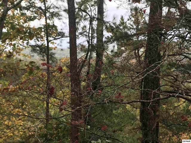 Lot 32AB Red Bone Way, Sevierville, TN 37876 (#225484) :: Four Seasons Realty, Inc