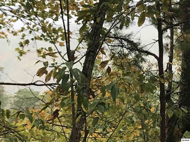 Lot 30AB Red Bone Way, Sevierville, TN 37876 (#225486) :: Four Seasons Realty, Inc