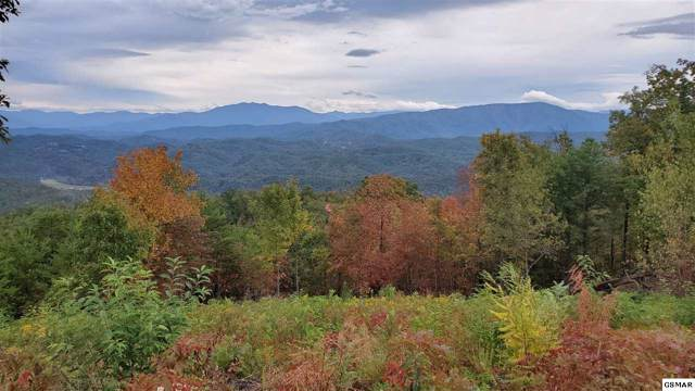 Lot 109 Summit Trails Drive, Sevierville, TN 37862 (#225506) :: Jason White Team | Century 21 Four Seasons