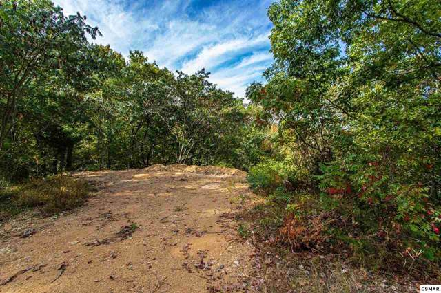 Lot 12-C Monte Woods Circle, Pigeon Forge, TN 37863 (#225525) :: Four Seasons Realty, Inc
