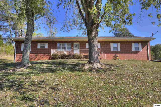 2452 Long Branch Rd, Seymour, TN 37865 (#225534) :: Colonial Real Estate
