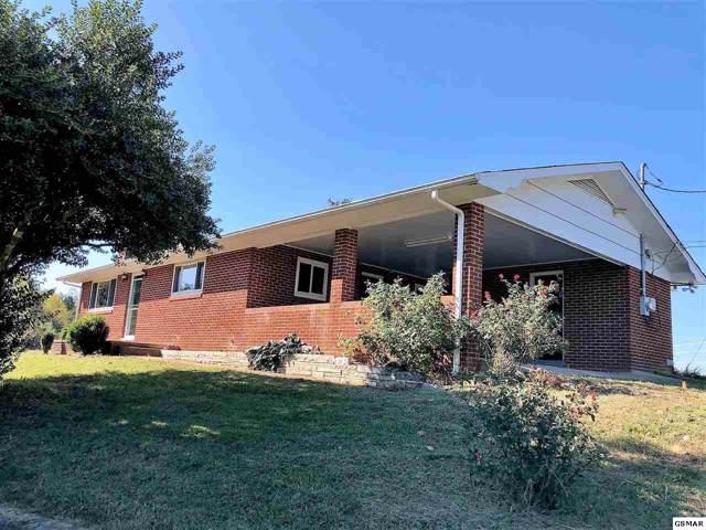 815 Lohman Road, Sevierville, TN 37876 (#225558) :: SMOKY's Real Estate LLC