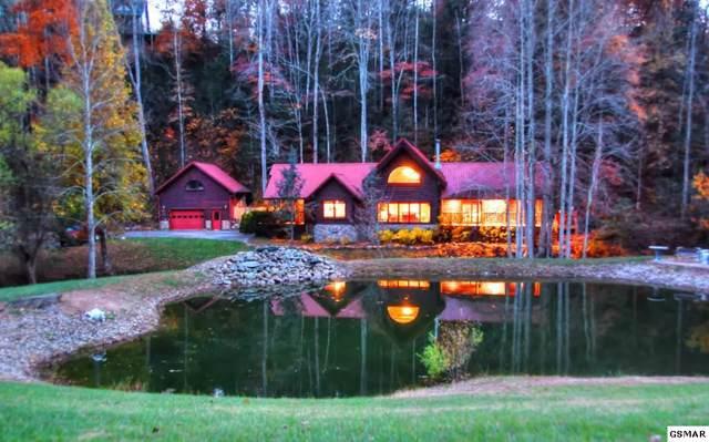 2609 Cedar Falls Way, Sevierville, TN 37862 (#225571) :: Four Seasons Realty, Inc