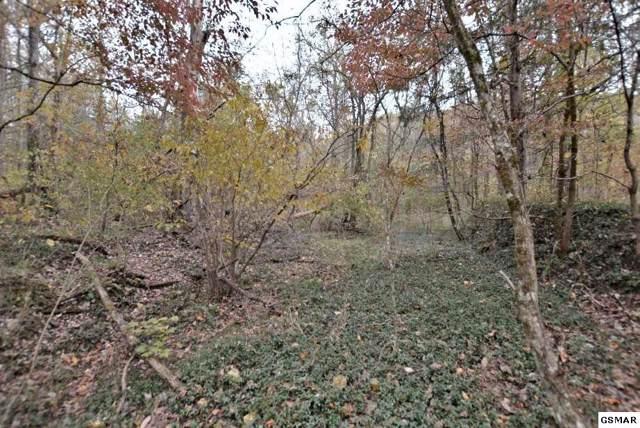 Lot 4 Rocky Flats Road, Cosby, TN 37722 (#225577) :: Four Seasons Realty, Inc