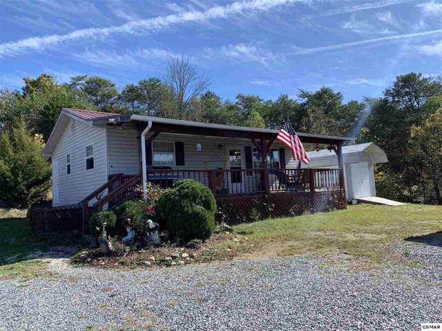 2280 Black Oak Ridge Rd, Sevierville, TN 37876 (#225582) :: The Terrell Team