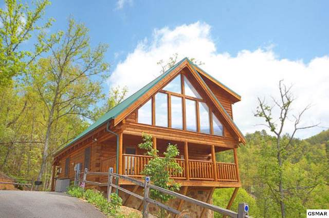 1755 Bassett Way Altitude, Sevierville, TN 37876 (#225597) :: Colonial Real Estate