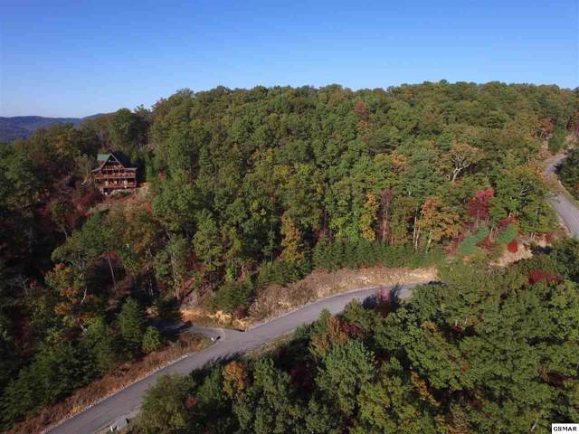 Settlers View Ln Lot 132E, Sevierville, TN 37876 (#225598) :: Four Seasons Realty, Inc