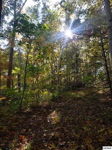 Autumn Autumn Ln # 00, Gatlinburg, TN 37738 (#225600) :: Colonial Real Estate