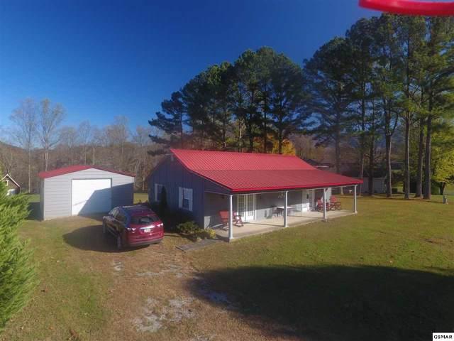 4229 Monte Vista, Cosby, TN 37722 (#225619) :: Colonial Real Estate