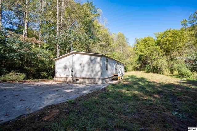 2263 Upper Middle Creek Rd, Sevierville, TN 37876 (#225625) :: The Terrell Team