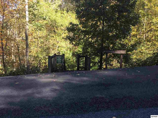 Whetstone Rd., Sevierville, TN 37862 (#225627) :: Colonial Real Estate