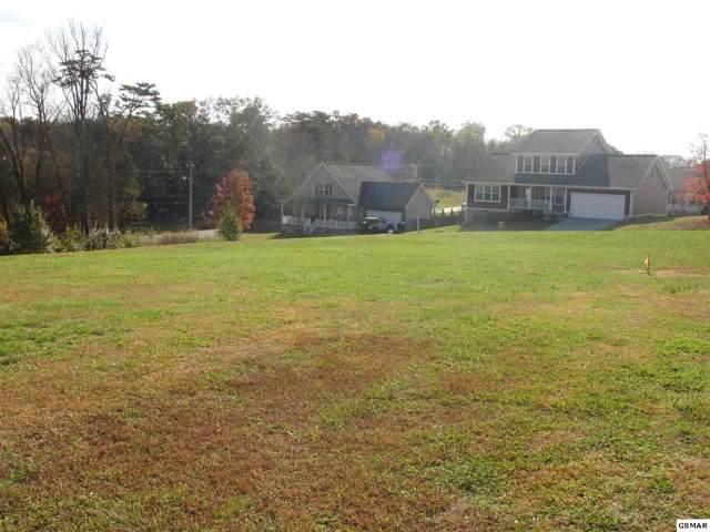 Lot 24 & 25 Lori Ellen Ct, Sevierville, TN 37876 (#225645) :: Colonial Real Estate