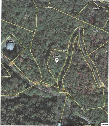 Green Forest Rd., Cosby, TN 37722 (#225663) :: Colonial Real Estate