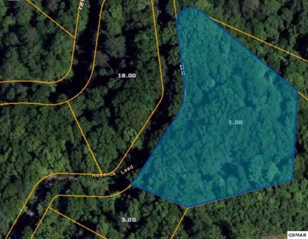 Lot 23 Headrick Lead, Sevierville, TN 37862 (#225668) :: Colonial Real Estate