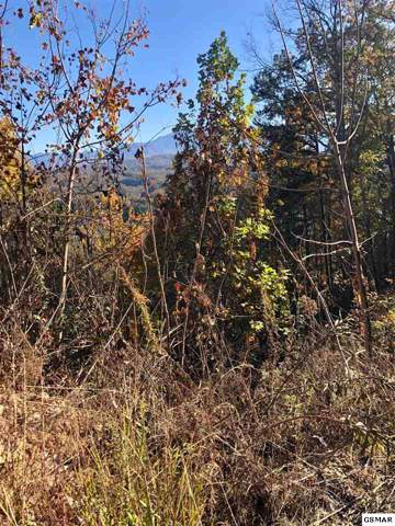 Fox View Rd., Sevierville, TN 37876 (#225678) :: Colonial Real Estate