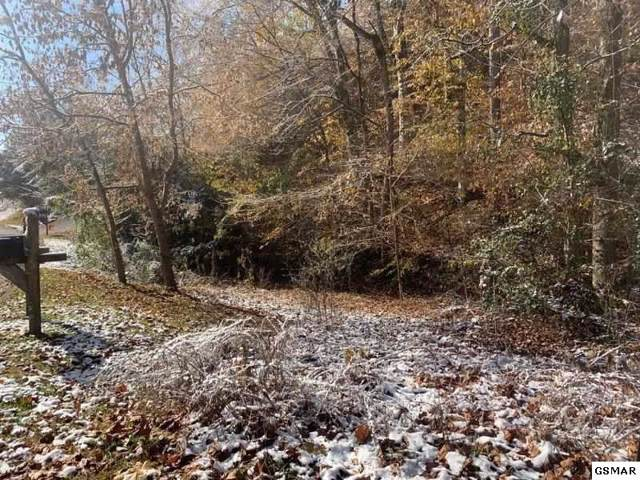 Tract 4 Ruth Lane, Sevierville, TN 37876 (#225700) :: Colonial Real Estate