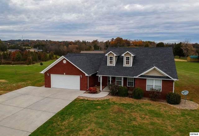 402 Christine Lane, Jefferson City, TN 37725 (#225705) :: Colonial Real Estate