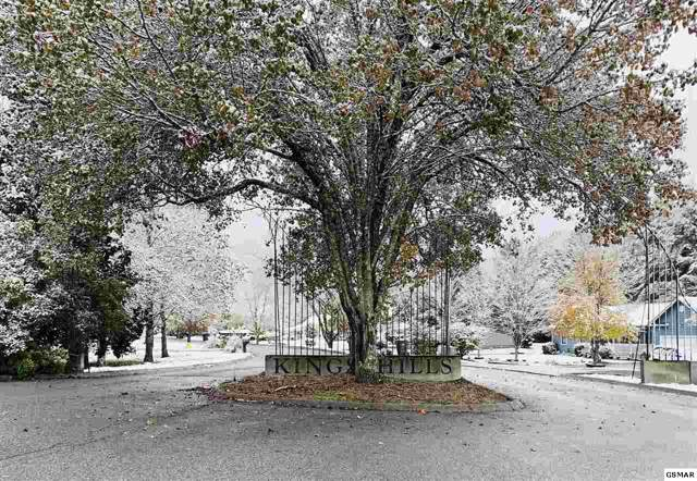 St Charles Pl Lot#36, Pigeon Forge, TN 37863 (#225713) :: Colonial Real Estate