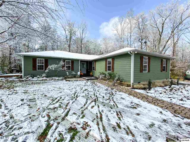 553 Rocky Flats Rd, Cosby, TN 37722 (#225714) :: Colonial Real Estate