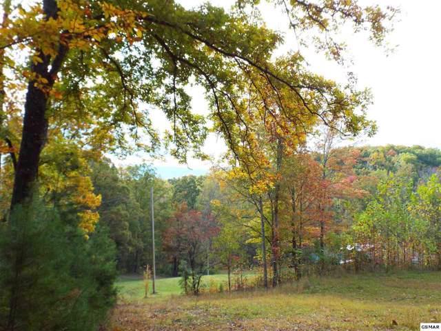 734 English Mountain Road, Newport, TN 37821 (#225718) :: Four Seasons Realty, Inc