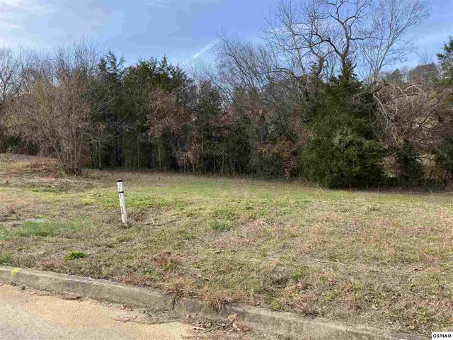 Lot 26 Ally Lane, Sevierville, TN 37876 (#225726) :: Billy Houston Group