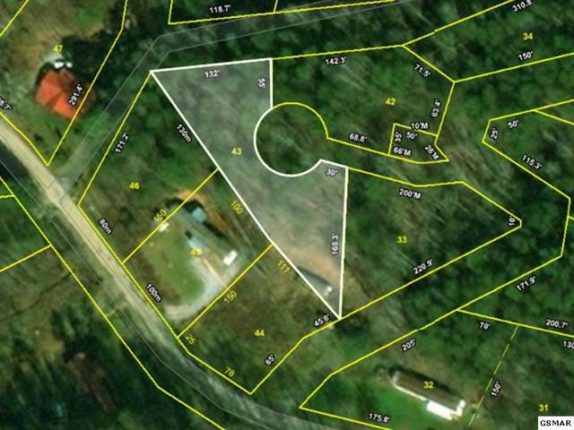 lot 43 Catons Grove Rd, Cosby, TN 37722 (#225766) :: SMOKY's Real Estate LLC
