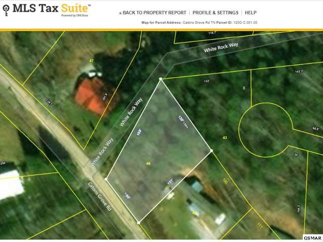Lot Lot 46 Catons Grove, Cosby, TN 37722 (#225767) :: SMOKY's Real Estate LLC