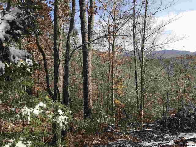 Hollow Rd./Cote Way, Cosby, TN 37722 (#225769) :: SMOKY's Real Estate LLC