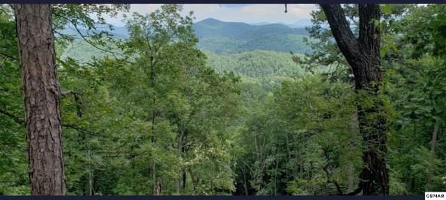 Lot 14 Autumn Ridge Way Lot 14, Sevierville, TN 37876 (#225774) :: Jason White Team | Century 21 Four Seasons