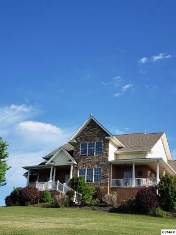 104 Eagle Nest Lane, Dandridge, TN 37725 (#225829) :: The Terrell Team