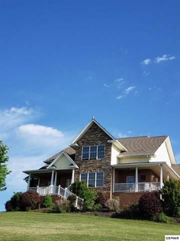 104 Eagle Nest Lane, Dandridge, TN 37725 (#225829) :: Four Seasons Realty, Inc