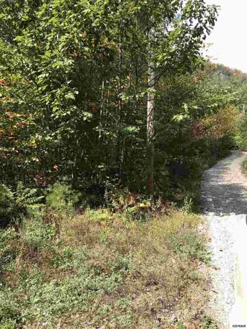 Lot 2 S Highway 340, Newport, TN  (#225845) :: Four Seasons Realty, Inc