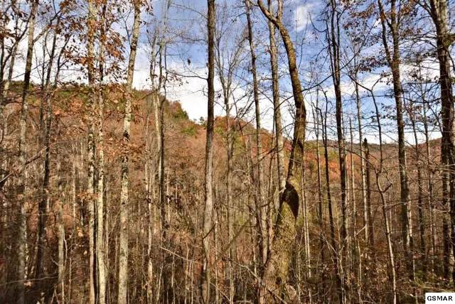 Lot 11 Whetstone Road, Sevierville, TN 37862 (#225856) :: Four Seasons Realty, Inc