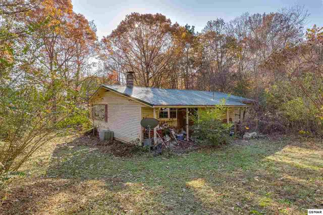 10937 Yarnell Rd, Knoxville, TN 37932 (#225857) :: The Terrell Team