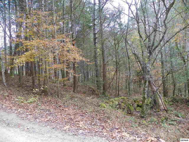 Lot# 122 Creek Hollow Way, Sevierville, TN 37876 (#225858) :: Jason White Team | Century 21 Four Seasons