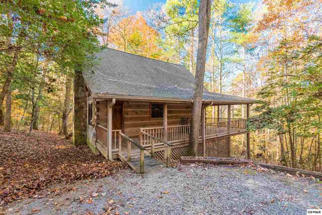 144 Black Mash Hollow Rd, Townsend, TN 37882 (#225867) :: Colonial Real Estate