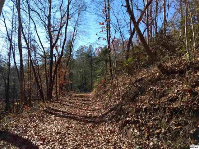 Reed Ridge Rd Off Parcel 012.00, Gatlinburg, TN 37738 (#225882) :: Four Seasons Realty, Inc