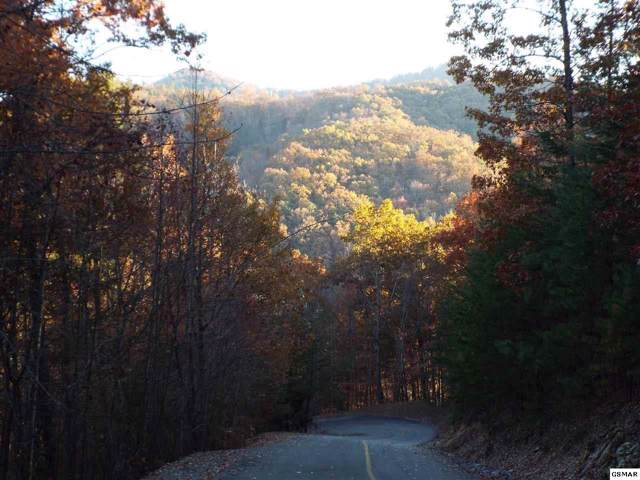 Lot 55 Whetstone Road, Sevierville, TN 37862 (#225892) :: Four Seasons Realty, Inc