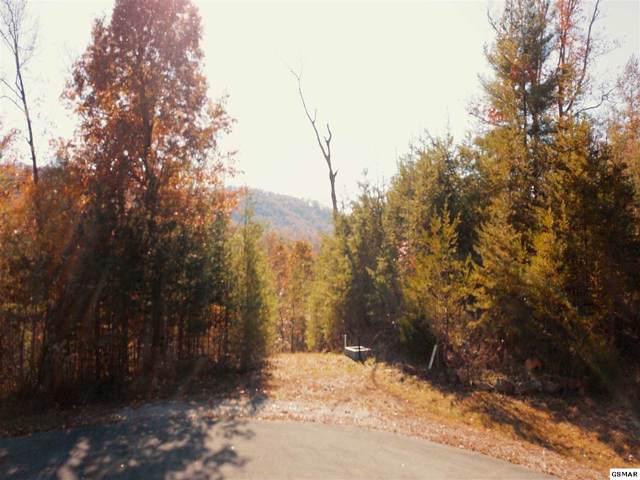 449 Hawken Drive, Walland, TN 37886 (#225928) :: Four Seasons Realty, Inc