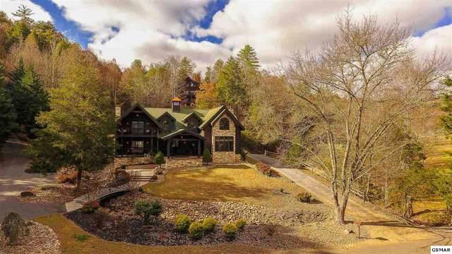 2603 Cedar Falls Way, Sevierville, TN 37862 (#225929) :: Tennessee Elite Realty