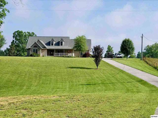 288 Clemon Road, Whitesburg, TN 37891 (#225961) :: The Terrell Team